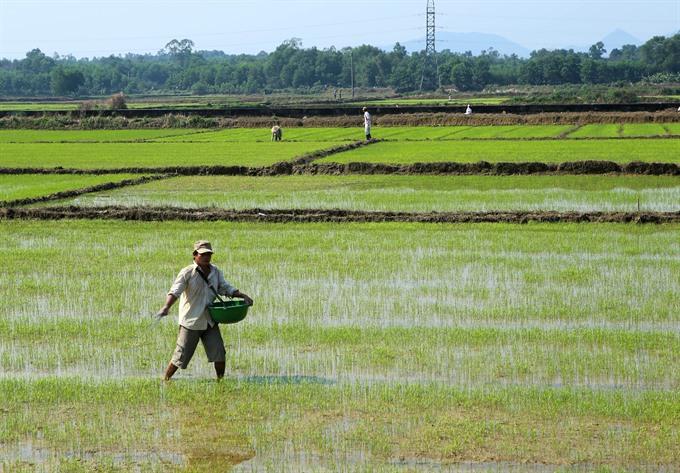 Vietnam wastes at least US$1 billion yearly on over fertilisation